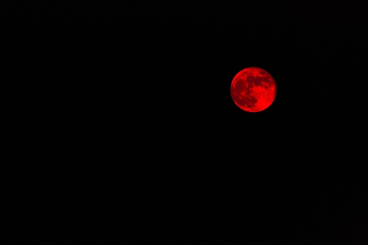 Image of a Blood Red Moon in the Sky