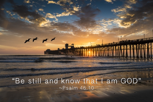 Pelicans fly near the Oceanside Pier. The encouraging bible quot