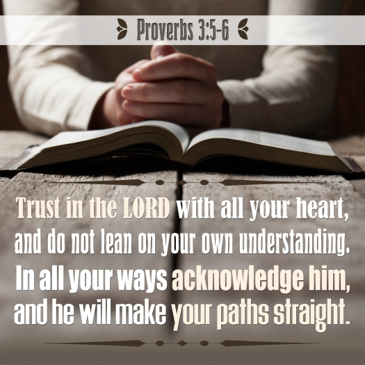 Proverbs 3:5-6 Trust In The Lord With All Your Heart, And Do Not