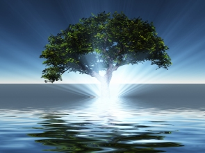 Surreal digital art. Green tree grows from the water. 3D rendering