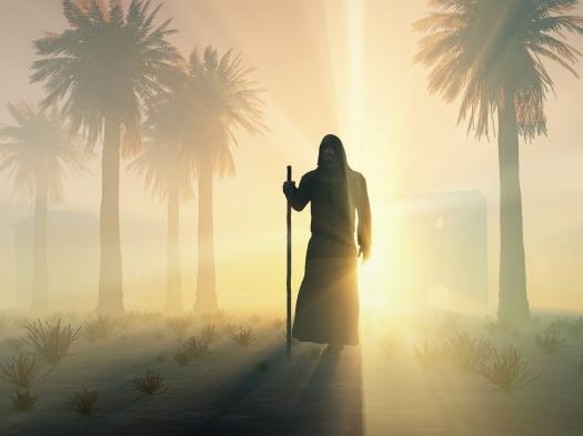 wandering monk at sunrise