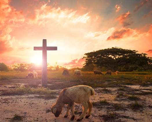 Resurrection Concept: The Lamb Of God In Front Of The Cross Of C